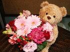 抱きつきくまアレンジメントM,生花,アレンジメント&クマのぬいぐるみ,当店内で人気です♪,お子様,彼女,恋人,誕生日,プレゼント,新宿,四谷,楽天,シャムロック