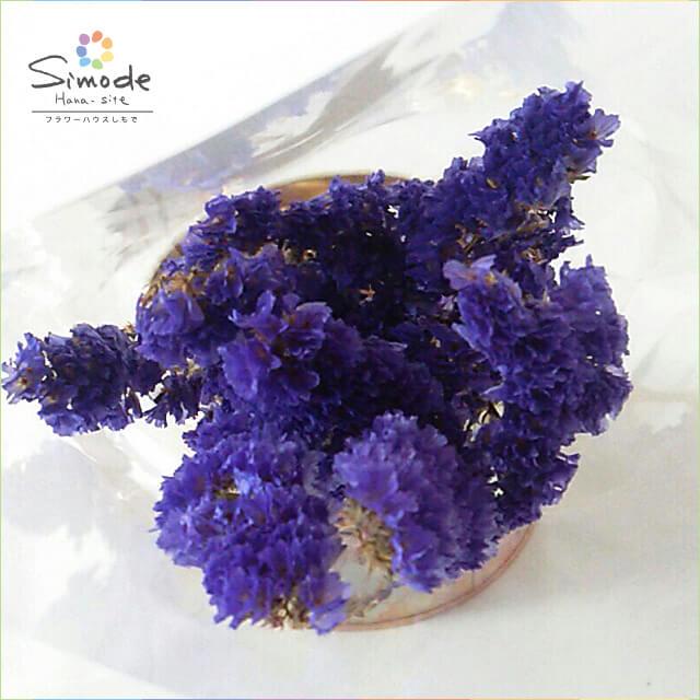 ハーバリウムに!ドライフラワー スターチス(青紫)3〜5本