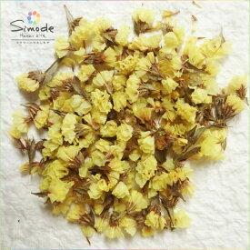 ハーバリウム、キャンドル、レジン素材に!ドライフラワー スターチス(花のみ・黄色)5グラム