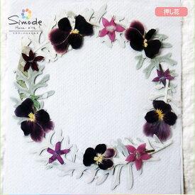 【S-725】花材・押し花のフラワーリース(ペンタス)シロタエギク、ビオラ、ペンタスリース作品に♪もちろん個々に使ってもOK!ハンドメイド素材として人気です。飛騨で手作りしています。国産品の安心品質です!