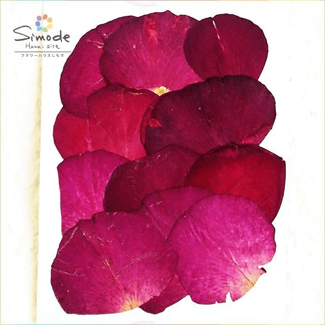 【S-455】バラの花びら(赤)12枚【ばら、ローズ、薔薇】【飛騨】【山野草の押し花】【押し花パック】【押し花素材】【手作り】【キット】