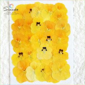 【S-647】押し花 パンジー(黄色)25枚レジン、ハーバリウム、キャンドルなどのハンドメイド素材に。飛騨のお花屋さんが手作りしています。安全安心の国産品質です