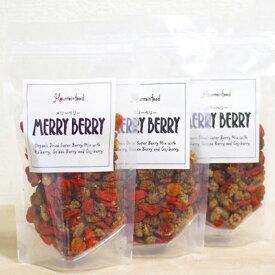 3種メリーベリー120g(3袋セット) オーガニックドライフルーツ/健康食品