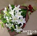 カサブランカの大きな花束高品質のカサブランカをお届けします【御祝】【記念日】【御供】