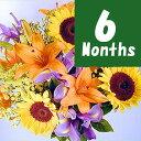 フラワーファームお誕生花-6ヶ月定期便-