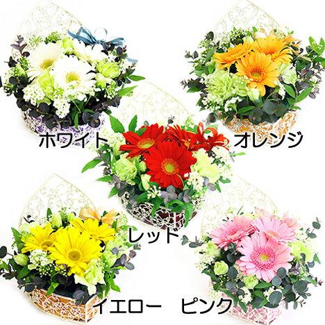 ***エンゼルハート*** アレンジ お花 お祝い フラワーギフト 誕生日☆お見舞いの花 御祝 お誕生日 フラワー flower 【送料無料】【あす楽】【RCP】