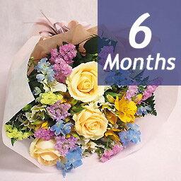 季節の花束・デラックス-6ヶ月定期便-