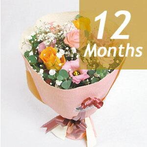 季節の花束-12ヶ月定期便-