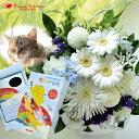ペットのお供え【お供えセット】旬のおまかせお供え花アレンジSサイズ&ペット専用お線香【虹のかなた】ギフトセット…