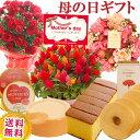 \早割/母の日 プレゼント 花 ギフト 選べる9種類 選べる花鉢&リースとスイーツのセット母の日ギフトカーネーション…