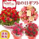 \早割/母の日 プレゼント 花 ギフト 選べる花鉢&リース母の月 カーネーション アジサイ ケイトウ リースご注文から…