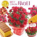 \遅れてごめんね/ 【あす楽】母の日 プレゼント 花 ギフト 選べる花鉢&リース 他 とスイーツセット 母の日ギフトカ…