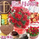\遅れてごめんね/ 【あす楽】母の日 ギフト プレゼント 選べる花鉢&リースとプレミアムスイーツのセット 母の日ギ…