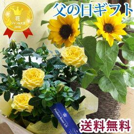 【2021父の日】 父の日 プレゼント【送料無料】 選べる花鉢 黄色バラ or ひまわり鉢植え 花 ギフトおまかせカゴ付き メッセージカード付き 送料無料(一部地域を除く)バラ ヒマワリ 育てる贈り物 植物 2021父の日 花 ギフト FKPP FKTK