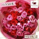 【あす楽15時まで受付】バラ50本花束 お祝い フラワーギフト プレゼント バラ 薔薇 本数 指定 限定 花束 送料無料 向…