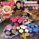 母の日 プレゼント 鉢植え [あじさい カゴ付] 遅れてごめんね 母の日ギフト 宅配 花 ギフト セット 鉢植 おしゃれ か…