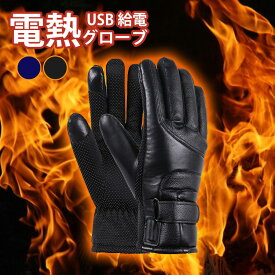 Usb 電熱 グローブ