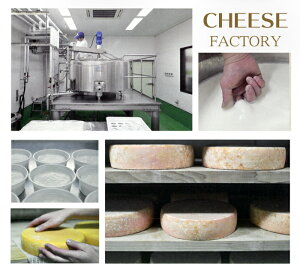 <那須高原今牧場チーズ工房人気チーズセット3種>