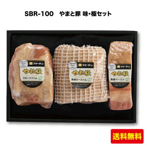 やまと豚 ハム2種とベーコン詰め合わせ 味・極セット SBR-100 フリーデン ギフト FN07S