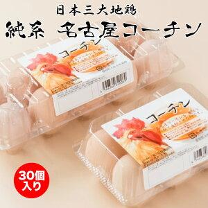 日本三大地鶏 純系 名古屋コーチン卵 30個入り 花井養鶏場 本州送料込 [愛知県 大府市]