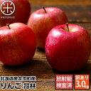 【予約販売】北海道余市産 りんご (訳あり品・品種:昴林)3kg【送料無料】【放射能検査済】