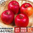 北海道余市産 りんご リンゴ3kg(訳あり品・品種:ふじ)【送料無料】【放射能検査済】