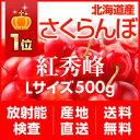 【7月25日から出荷スタート!】北海道産さくらんぼ「紅秀峰」 Lサイズ 500g(バラ詰め)【送料無料】