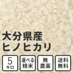 【送料無料】白米 玄米 無洗米 5kg 送料無料 大分県産 無農薬米 ヒノヒカリ 放射能検査済み