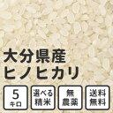 白米 玄米 無洗米 5kg 送料無料 大分県産 無農薬米 ヒノヒカリ 放射能検査済み