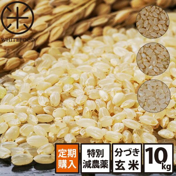分づき 玄米 新米 10kg 送料無料 北海道産ホワイトライス 減農薬米CL 残留農薬検査済み 放射能検査済み 定期購入