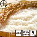 白米 玄米 無洗米 新米 5kg 送料無料 北海道産ホワイトライス 残留農薬検査済み 放射能検査済み