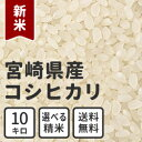 New_miyazaki_10kg