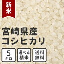 New_miyazaki_5kg
