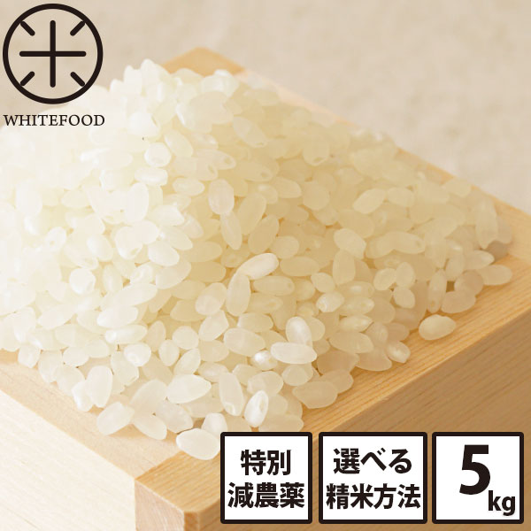 白米 玄米 無洗米 新米 5kg 送料無料 北海道産ホワイトライス 減農薬米CL 残留農薬検査済み 放射能検査済み 定期購入