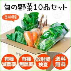 【定期購入】【送料無料】宮崎県産 旬の野菜10品セット【放射能検査済】【日曜・月曜発送不可】