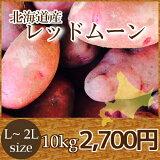 北海道産じゃがいもレッドム−ン(10kg)