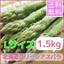 【送料無料】露地もの北海道グリ−ンアスパラガス(Lサイズ、1.5kg)