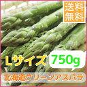【送料無料】露地もの北海道グリ−ンアスパラガス(Lサイズ、750g)