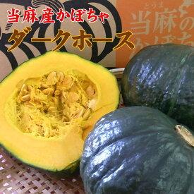 【無添加・調理済】冷凍カットかぼちゃ3kg入【当麻産ダ−クホ−ス使用】