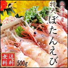 特大ぼたんえび(500g)【送料無料】