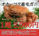 【10尾以上で送料無料!】北海道産毛ガニ(約420〜450g)※写真とは規格・価格変更