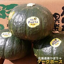 【訳あり】北海道産かぼちゃ「ダークホース」(約10kg)※9月中旬〜下旬頃発送予定(時期は前後)