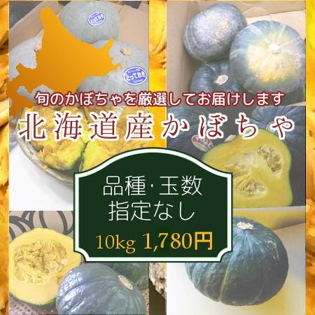 北海道産かぼちゃ(約10kg、品種指定なし)※9月上旬〜10月下旬頃発送予定(時期は前後)