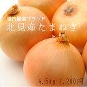 【好評販売中】北見産たまねぎ(約4.5kg)