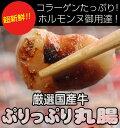 ぷるっぷるの国産牛丸腸100g