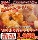 【40%OFF】激安!!お試し!!送料無料!!夏はこれで決まり!!北海道産白モツセット!!タレも3種類付けちゃいます!さらにおまけ付き!!