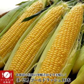 【早割】とうもろこし 黄粒ゴールドラッシュ 10本 L〜2L 北海道産[とうきび スイートコーン][正規品][8月下旬前後頃より収穫次第ご注文順に出荷]