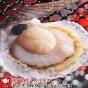 【特売中】【先着100個限定】【送料無料】大サイズ北海道産貝付き活ホタテ約3kg分(15枚前後〜17枚前後)[活ほたて/帆立…