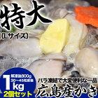 【送料無料】【広島産】でっかいLサイズ!保存に便利な特大カキ約2kg(約60〜90粒前後)(正味量約1.6kg)(加熱用)(冷凍)[かき/牡蠣]【smtb-td】【楽ギフ_のし】