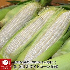 【送料無料】北海道産ホワイトコーン(大きなL-2L)10本(8月下旬前後頃より順次発送)[白とうもろこし/トウモロコシ][とうきび][スイートコーン](冷蔵)